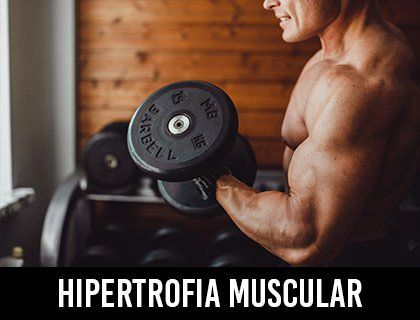 Hipertrofia Muscular