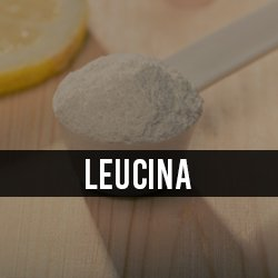 Leucina/HMB