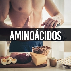 Aminoácidos