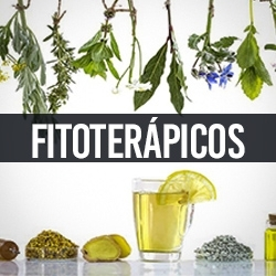 Fitoterápicos