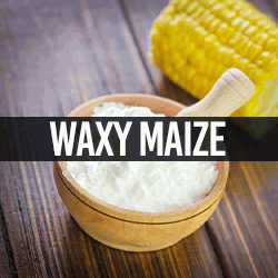 Waxy Maize